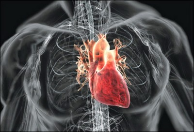 Боль в плече при заболеваниях сердца