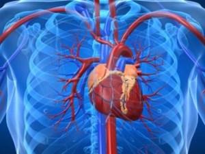 Сердечные заболевания которые провоцируют боль в правой стороне грудной клетки