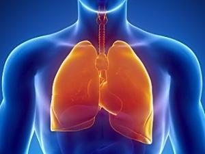 Заболевания и патологии легких, которые можно определить при помощи УЗИ
